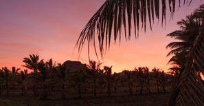 Коли под наем Лабаза, Фиджи