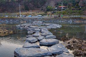 Коли под наем Чолладо, Южна Корея