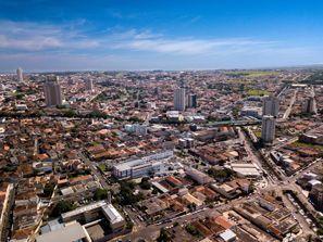 Aluguel de carros em Franca, Brasil
