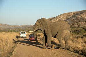 Sewa mobil Klerksdorp, Afrika Selatan