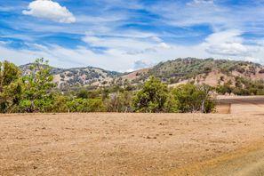 Sewa mobil Muswellbrook, Australia