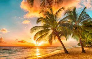 Rental mobil Barbados