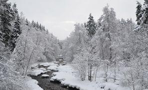 Sewa mobil Nurmijarvi, Finlandia