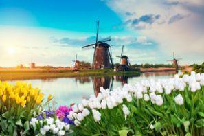 Thuê xe giá rẻ tại Hà Lan